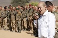 """Pháp tìm cách tháo gỡ """"ngòi nổ"""" bất ổn ở khu vực Sahel"""