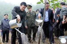 Chủ tịch nước phát động Tết trồng cây Xuân Giáp Ngọ 2014