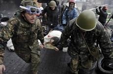 """Đức, Mỹ, Nga kêu gọi """"một giải pháp chính trị"""" ở Ukraine"""