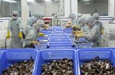 Xuất khẩu tôm năm 2014: Cơ hội nhiều, rủi ro cũng lớn