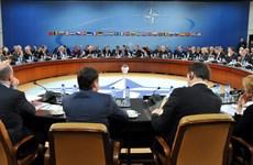 NATO muốn tháo gỡ căng thẳng Ukraine với giải pháp hòa bình