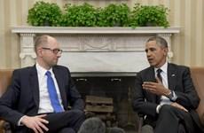 Ukraine tiếp tục thảo luận với Mỹ, NATO về hỗ trợ quân sự