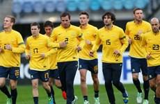 Đội tuyển Australia tự tin, sẵn sàng cho trận mở màn