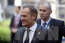 Thủ tướng Ba Lan Donald Tusk đối mặt sức ép từ chức