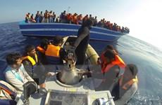 Hải quân Italy cứu hàng trăm người nhập cư gặp nạn