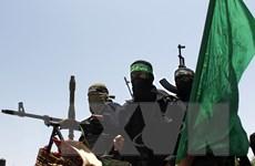 Israel cáo buộc phong trào Hamas phạm tội ác chiến tranh
