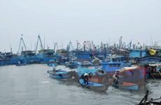 Các tỉnh ven biển khẩn trương di dân ứng phó với bão số 2