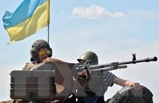 Việt Nam hết sức lo ngại về bạo lực gia tăng ở Đông Ukraine