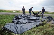 Các phe ở Ukraine đạt thỏa thuận di chuyển thi thể nạn nhân MH17
