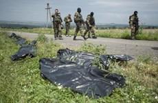 Washington Post: Sau khi bắn hạ MH17, tên lửa BUK được rút trở lại Nga