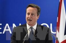 Thủ tướng Anh yêu cầu Nga ngừng hỗ trợ quân ly khai ở Ukraine