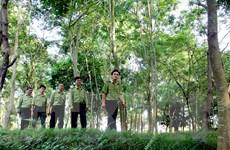 Điện Biên hoàn thành xây dựng kế hoạch hành động REDD+
