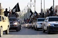 Thủ lĩnh IS ở Iraq chạy sang Syria để tránh không kích của Mỹ