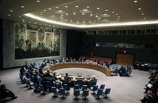 Nga tuyên bố HĐBA không cho phép dùng vũ lực tại Iraq và Syria