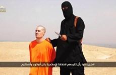 Quân Mỹ thất bại trong nỗ lực giải cứu những con tin ở Syria