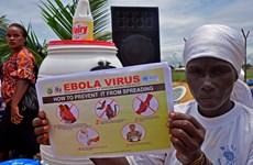 Tổ chức Y tế Thế giới họp tham vấn về vắcxin ngừa virus Ebola