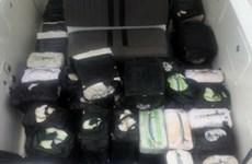 Colombia bắt giữ hơn 800kg cocaine đang vận chuyển tới Mỹ