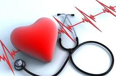 Khai mạc Hội nghị tim mạch toàn quốc lần thứ 14 tại Đà Nẵng