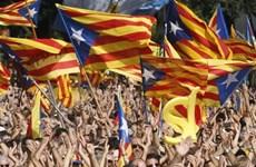 Tòa án Tây Ban Nha có thể đình chỉ thăm dò dư luận của Catalonia