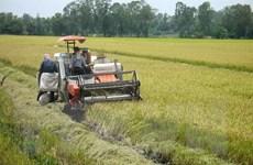 Đại biểu Quốc hội: Cần thay đổi phương thức sản xuất cho nông dân