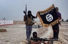 Bỉ lo ngại về hoạt động tuyên truyền của Nhà nước Hồi giáo