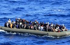 Italy cứu tàu chở 450 người nhập cư trái phép gặp nạn