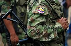Colombia: Tổ chức FARC cảnh báo hủy bỏ ngừng bắn đơn phương