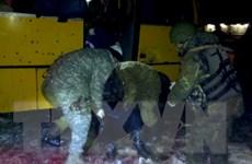 Xung đột bạo lực tiếp diễn gây nhiều thương vong tại Ukraine