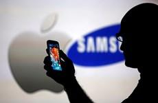 """Apple đang """"thôn tính"""" dần thị phần của Samsung tại Hàn Quốc"""