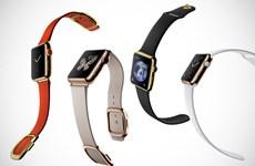 [Photo] Cận cảnh bộ sưu tập các phiên bản của Apple Watch