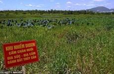 Vấn đề chất độc da cam ở Việt Nam lại được đưa ra Quốc hội Mỹ
