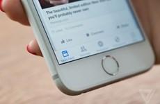 Facebook muốn người dùng chia tay dần với trình duyệt web