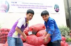TTXVN chung tay tiêu thụ hành tím giúp bà con nông dân Sóc Trăng