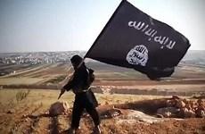 Thủ lĩnh số 2 của Nhà nước Hồi giáo tự xưng bị tiêu diệt ở Iraq
