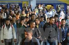 Đức tạm siết chặt biên giới để ngăn lượng người tị nạn kỷ lục đổ về