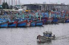 Ứng phó với bão số 3: Học sinh Đà Nẵng nghỉ học từ trưa 14/9