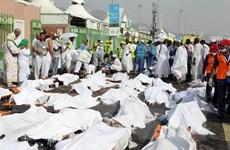 Số người chết trong vụ giẫm đạp ở Mecca lên tới 1.358 người
