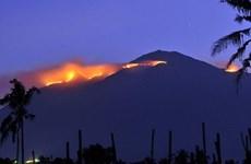 Cháy rừng làm bảy người leo núi thiệt mạng ở Indonesia