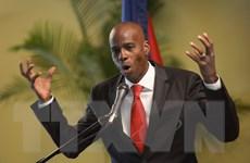 Bầu cử Tổng thống Haiti: Số lượng ứng cử viên đông kỷ lục