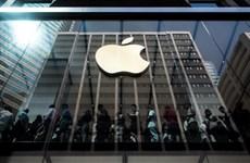 Hãng Apple âm thầm mở công ty đại diện tại thị trường Việt Nam