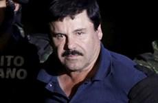 Mexico: Việc dẫn độ ông trùm El Chapo sang Mỹ có thể mất nhiều năm