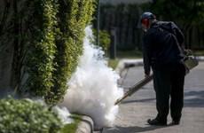 Thái Lan trấn an người dân sau khi phát hiện thêm ca nhiễm Zika