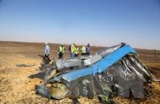 Ai Cập: Máy bay A321 của Nga bị khủng bố bắn rơi trên bán đảo Sinai