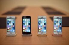 """7 ngày thế giới công nghệ: Apple và canh bạc iPhone SE """"giá rẻ"""""""