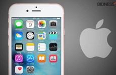 iPhone có thể có màn hình mới, sạc không dây vào năm tới