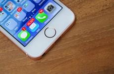 Người dùng iPhone trung bình ấn mở máy 80 lần mỗi ngày