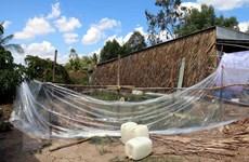 Nạn nhân ngạt khí độc rò rỉ từ hầm biogas đã vượt qua nguy kịch
