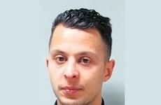Vụ khủng bố tại Pháp: Nghi can Salah Abdeslam bị buộc tội