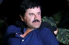 Trùm ma túy El Chapo có thể sớm bị Mexico dẫn độ sang Mỹ
