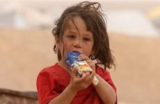 Mỹ điều tra gian lận tiền hỗ trợ nhân đạo cho người dân Syria